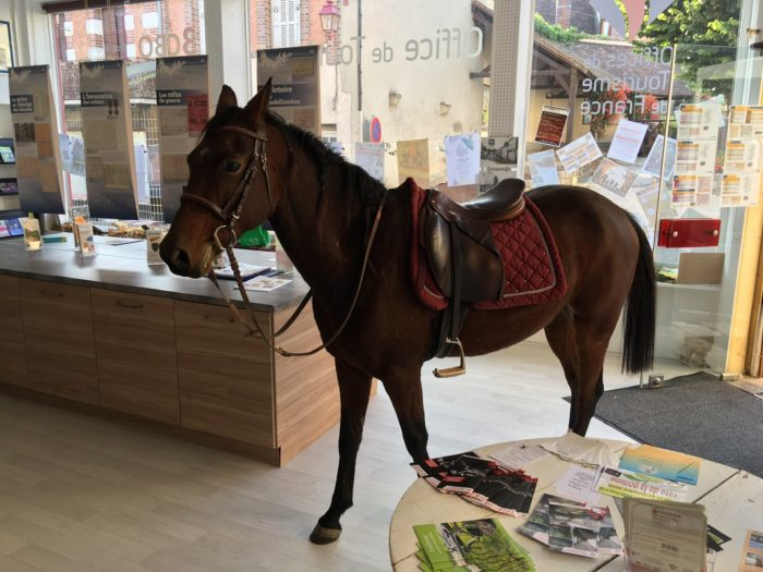 cheval-OT