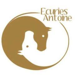 Ecuries Antoine