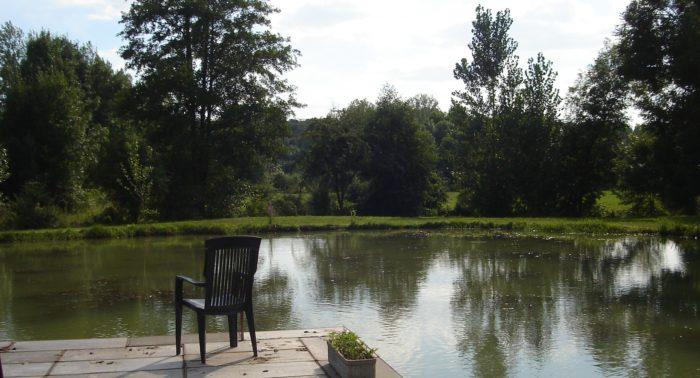 l 'étang