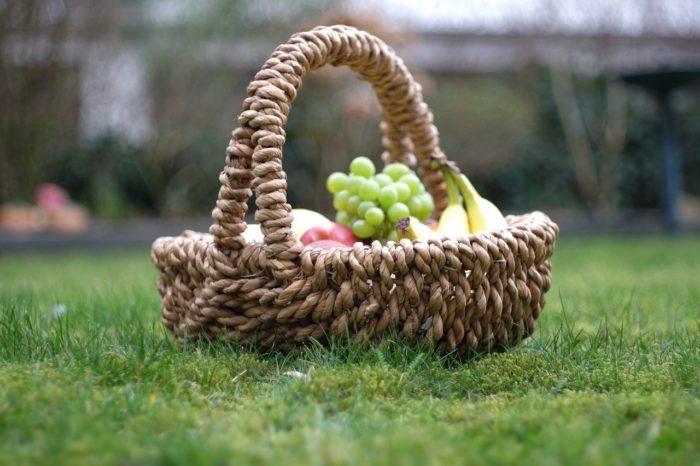 garden-2124757_1280
