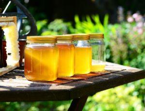 honey-352205_1920